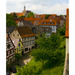 4x5_tilt_germany-1406_thumb