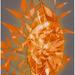 Solar-8_thumb
