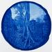 Tree-cambodia_thumb